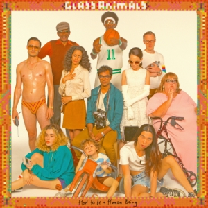 Glass animals Ft